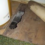 Termite damaged floor