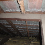 termite damaged roof rafter