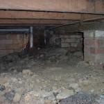 termite nest in subfloor