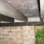 termite workings in subfloor